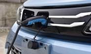 全球新能源车型纷至沓来 国内自主品牌承压