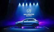 造车新势力史上最大单轮融资额诞生 威马完成100亿 D轮融资
